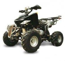 Квадроцикл LMATV-150B