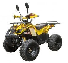 Электрический квадроцикл Sherhan 1000S