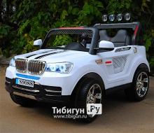 Электромобиль BARTY  BMW T003MP