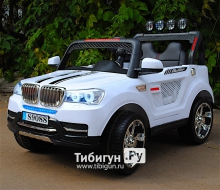 Электромобиль BARTY  BMW T003MP