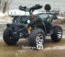 Квадроцикл Avantis Hunter 200 Premium
