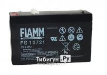 Аккумулятор FIAMM FG10721