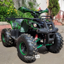 Электрический квадроцикл GreenCamel Atakama T200