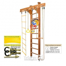 Домашний спортивный комплекс Kampfer Wooden Ladder Ceiling Basketball Shield