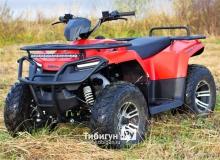 Квадроцикл бензиновый IRBIS ATV 250 Premium