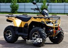 Квадроцикл бензиновый IRBIS ATV 200 Premium