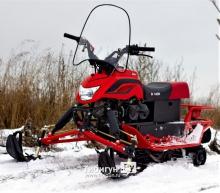 Снегоход Irbis DINGO T150 2021