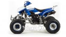 Квадроцикл на бензине Motoland 250 Dakar