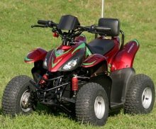 Детский электроквадроцикл Simbel Mini Q eco